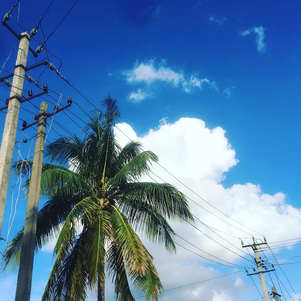 travel-iphoneography-jigani-bangalore-karnataka
